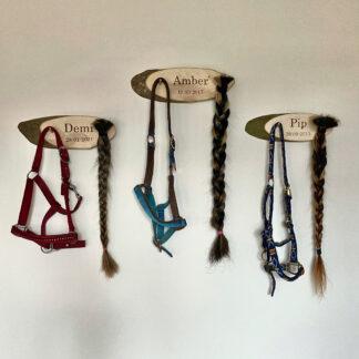 Naambord essen 30 cm gebruikt als gedenkbord met paarden halsters en paardenstaarten